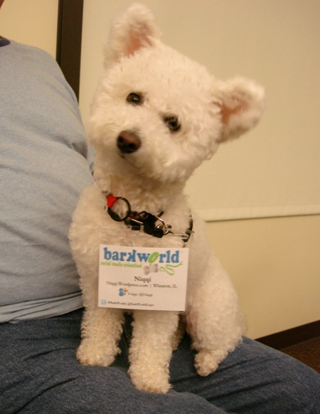 Niqqi's Barkworld Badge