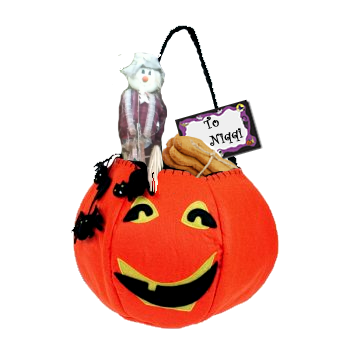Niqqi received a Halloween treat bag from the scarecrow.